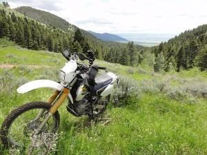 Bridger Mountain Riding in Montana